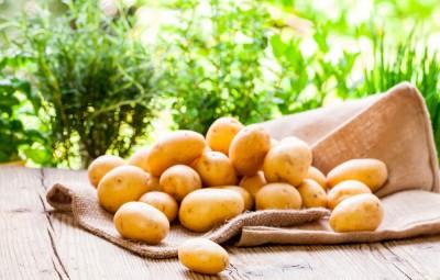 bienfaits des pommes de terre pour la santé