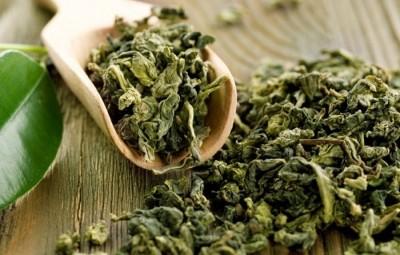 le thé vert conserver ses facultés cognitives